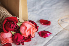 Roses on the table. Royalty Free Stock Photo
