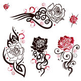 Roses, Tattoos Stock Images