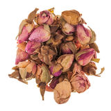 Roses Tea Bud Royalty Free Stock Photo
