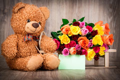 Roses and a teddy bear Royalty Free Stock Images