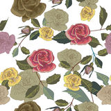 Roses texture Stock Images