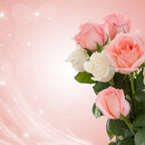 Roses to wedding day. Stock Images