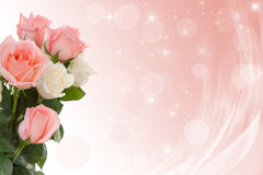 Roses to wedding day. Royalty Free Stock Photo