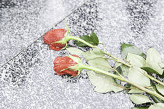 Roses in a tomb Stock Images