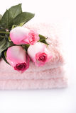 Roses and towels. Isolated on white Royalty Free Stock Image