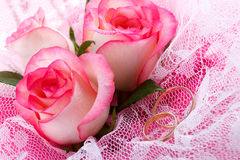 Roses and two wedding rings Stock Image