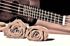 Roses and ukulele. Vine tone. Two dewy roses and string instrument. Retro style toned royalty free stock image