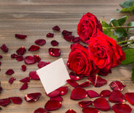 Roses for valentine's day and mother's day Royalty Free Stock Photo