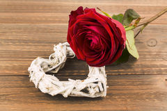 Roses for valentine's day and mother's day Stock Images