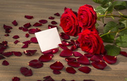 Roses for valentine's day and mother's day Royalty Free Stock Photos