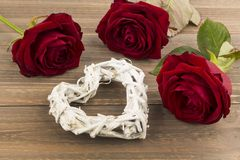 Roses for valentine's and mother's day Stock Image