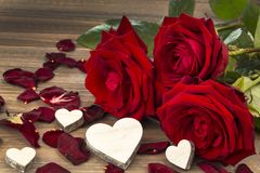 Roses for valentine's and mother's day Royalty Free Stock Images