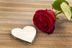 Roses for valentine's and mother's day Royalty Free Stock Photo