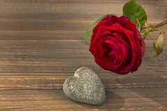 Roses for valentine's and mother's day Royalty Free Stock Image
