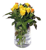 Roses in a vase. Isolated on white Stock Photography