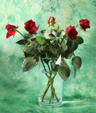 Roses in vase. Bouquet of red roses in vase, on green background stock photography