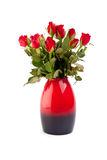 Roses in vase. Red roses in red and black vase isolated on white background royalty free stock photo