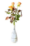 Roses in vase. Isolated on white background Royalty Free Stock Photography