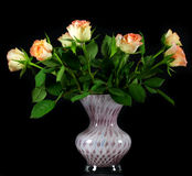 Roses in a vase on a black Royalty Free Stock Photography