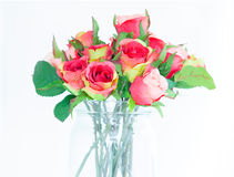 Roses in vase. Bouquet of fresh multicolored roses in vase royalty free stock image