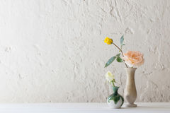 Roses in vase on old white background Stock Photo