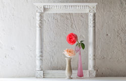 Roses in vase on old white background Stock Images