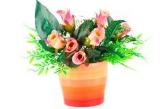 Roses in vase Stock Image
