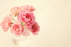 Roses In Vase on Pink. Sweet pink roses in a clear glass vase with pink background with shallow depth of field and a beautiful retro pink filter, for use as a stock images