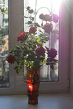 Roses in a vase. Red roses in a red vase on the table Stock Images