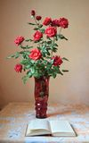 Roses in a vase. Red roses in a red vase on the table Stock Photo