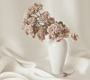 Roses, vase, still life, flowers, plants Royalty Free Stock Photo