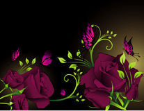 Roses vector illustration Royalty Free Stock Image