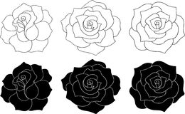 Roses Vector Illustration. Black and White Roses Vector Illustration (silhouettes and outlines Stock Images