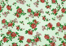 Roses vintage background. Stock Photography