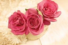 Roses (vintage) Stock Photos