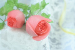 Roses on Voile. Soft diffuser on the camera len Stock Photo