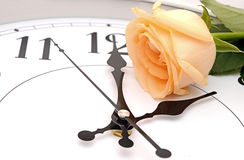 Roses and wall clock Stock Photos