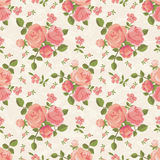 Roses wallpaper Stock Photography