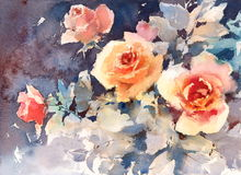 Roses Watercolor Flowers on dark background Illustration Hand Painted Stock Photos