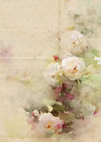 Roses watercolor vintage background Stock Photography