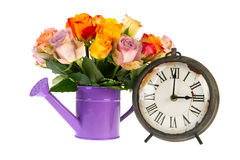 Roses in watering can with vintage clock Royalty Free Stock Photo
