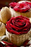 Roses in Wattle Baskets royalty free stock photos
