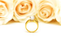 Roses and wedding ring isolated on the white. Roses and wedding  ring isolated on the white Royalty Free Stock Photo