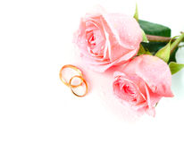 Roses and wedding rings Royalty Free Stock Image
