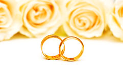 Roses and wedding rings. Isolated on the white Royalty Free Stock Photos