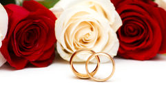 Roses and wedding rings isolated Royalty Free Stock Photography