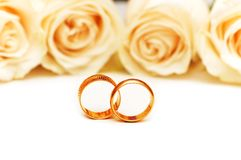 Roses and wedding rings isolated on the white. Roses and wedding rings  isolated on the white Royalty Free Stock Photography