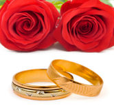 Roses and wedding rings Stock Image