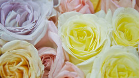 Roses, Weddings. Close up of roses, flowers Stock Photo