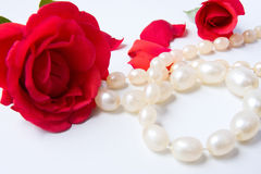 Roses and white necklace Stock Images